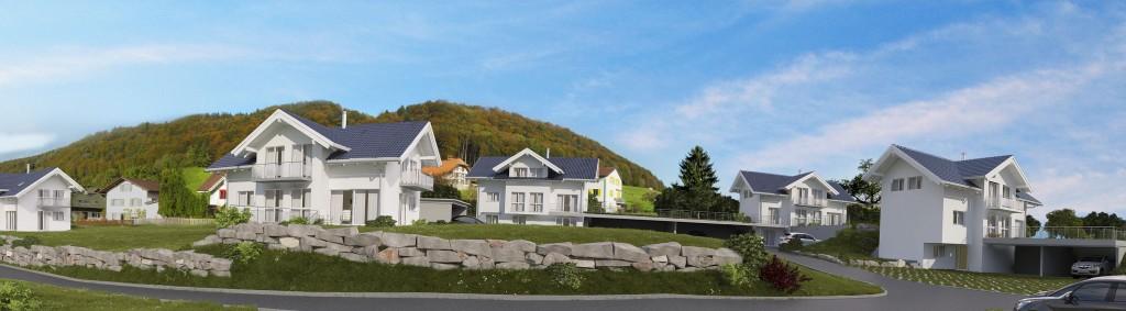 in der Hauenen entstehen insgesamt 14 Einfamilienhäuser